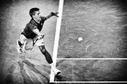 Novak Djokovic  Foto: Getty Images
