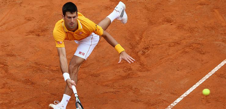Djokovic, la supervivencia del más apto