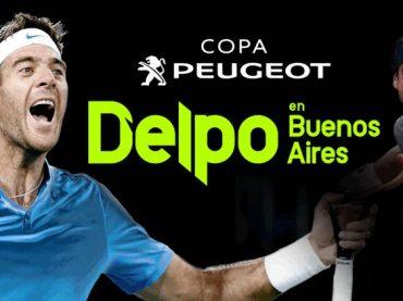 Copa Peugeot: Del Potro vs Ferrer en Argentina